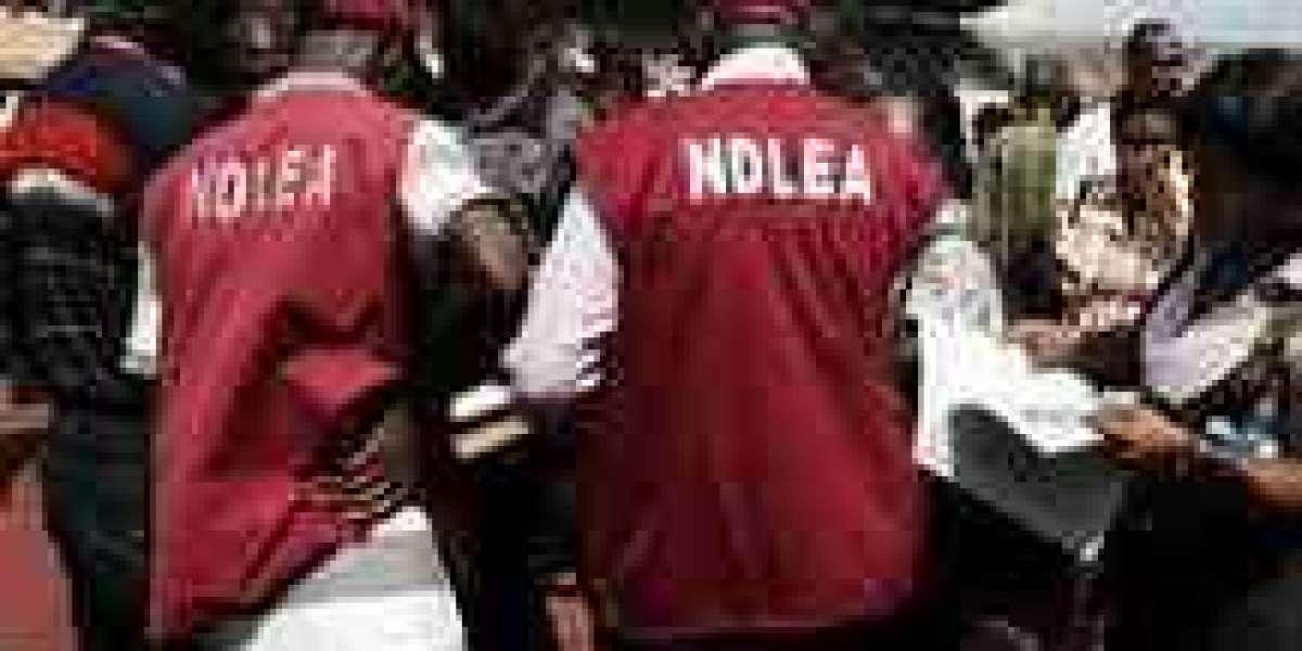 NDLEA Speaks On Sack Of Its Chairman, Abdallah