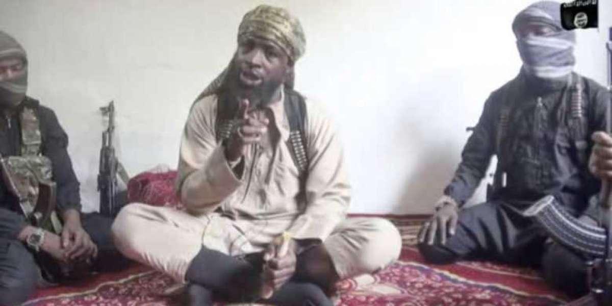 Boko Haram: 'Shekau Critically Ill, Ready To Beg Nigerians For Forgiveness
